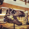 Bozeman Yellowstone International Airport, Photo added:  Wednesday, June 13, 2012 10:57 PM