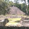 Lamanai, Přidány fotky: úterý 24. červen 2014 20:33