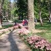 Gülhane Parkı, إضافة الصورة: السبت ٢٧ نيسان أبريل ٢٠١٣ ١٤:٣١