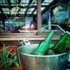 Foto Restaurante ABCCC Expointer, Esteio