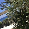 Bellonias Villas, Photo added: Sunday, July 3, 2016 12:19 PM