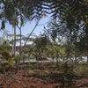Foto Parque da Cidade, Itupeva