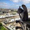 Cathédrale Notre Dame de Paris, Photo added: Tuesday, May 28, 2013 10:43 AM