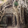 Angkor Wat, Photo added: Wednesday, July 3, 2013 8:27 PM