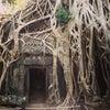 Angkor Wat, Photo added:  Wednesday, July 3, 2013 8:27 PM