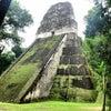 Tikal, Hình ảnh mới nhất được gửi:  thứ năm, 24 tháng 1 năm 2013 23:26