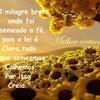 Foto Severiano Melo Terra do Cajú, Severiano Melo
