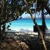 Salomon Beach, Photo ajoutée: mardi 26 février 2013 15:11
