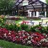 Foto Praça das Flores, Nova Petrópolis