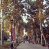 Gülhane Parkı, إضافة الصورة: السبت ٢٤ آب أغسطس ٢٠١٣ ١٦:٤١