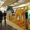 Abu Dhabi International Airport, Foto añadida: sábado, 2 de febrero de 2013 20:56