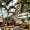 Orlando International Airport, Photo added:  Sunday, June 9, 2013 3:56 AM