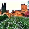 Bellapais Abbey, Photo added: Thursday, July 4, 2013 6:19 PM