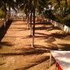 Foto Praçinha de Tamandaré, Tamandaré