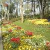 Gülhane Parkı, إضافة الصورة: الأحد ٢١ نيسان أبريل ٢٠١٣ ١٥:٣٣