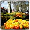 Gülhane Parkı, إضافة الصورة: السبت ٢٠ نيسان أبريل ٢٠١٣ ١٤:٣٥