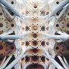 Basilica de la Sagrada Família, Фото додано:  пятница, 25 октября 2013 г., 13:25