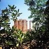 Ναός του Ολυμπίου Διός, Photo added: Tuesday, July 2, 2013 6:47 PM