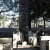 城中焼亡埋骨墳, Kuva lisätty:  keskiviikko, 20. helmikuuta 2013, klo 01.02