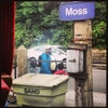 Moss, Photo added: Thursday, June 27, 2013 4:58 PM
