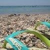 Παραλία Βάρκιζας, 添加的照片︰ 2013年7月10日星期三中午11点59分