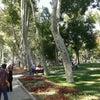 Gülhane Parkı, إضافة الصورة: الإثنين ٨ تموز يوليو ٢٠١٣ ١٤:٣٢