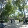 Gülhane Parkı, إضافة الصورة: السبت ١٨ أيار مايو ٢٠١٣ ١٥:١١
