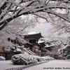 불국사, Photo added: Sunday, March 31, 2013 9:36 AM