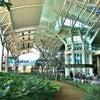 Bandar Udara Internasional Ngurah Rai, Foto è stata aggiunto: martedì, 22 ottobre 2013 05:49