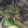 Mỹ Sơn Ruins, Foto tilføjet: søndag d. 1. april 2018 kl. 07:44