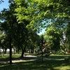 Калемегдан, צילום נוסף: ראשון, 18 במאי 2014 15:39