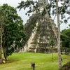 Tikal, Hình ảnh mới nhất được gửi:  thứ tư, 29 tháng 7 năm 2015 01:15