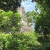 Tikal, Hình ảnh mới nhất được gửi:  thứ hai, 1 tháng 6 năm 2015 00:44