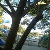 Foto AABB, Itaobim