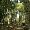 Gülhane Parkı, إضافة الصورة: السبت ١٨ أيار مايو ٢٠١٣ ١٣:٢٦