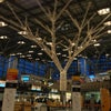 Flughafen Stuttgart - Manfred Rommel Flughafen, Photo added: Friday, January 4, 2013 4:48 PM