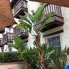 Photo of Fairfield Inn & Suites
