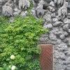 Valdštejnský palác, Photo added: Sunday, July 22, 2012 5:16 PM