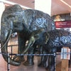 Indira Gandhi International Airport, Photo added:  Wednesday, June 6, 2012 11:26 AM