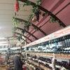 Foto Supermercado Nardelli, Rio do Sul