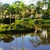 Foto Parque Ecológico Chico Mendes, Cidade Ocidental