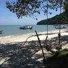 monkey beach, Φωτογραφία προσθέσει:  Κυριακή, 5 Φεβρουαρίου 2012 5:55 ΠΜ