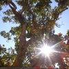 Lubumbashi Intl, Photo added:  Sunday, April 29, 2012 10:59 AM