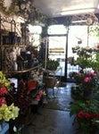 Toyo Griffith Park Florist