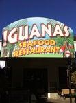 Iguanas Seafood Restaurant