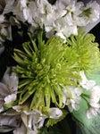Greenhouse Gallery Florist