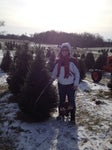 Daniken Christmas Tree Farm