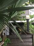 Ocho Bar at SoHo Beach House