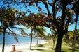Praia da Praia do Canto