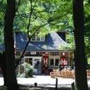 roy-van-zoggel-1124769